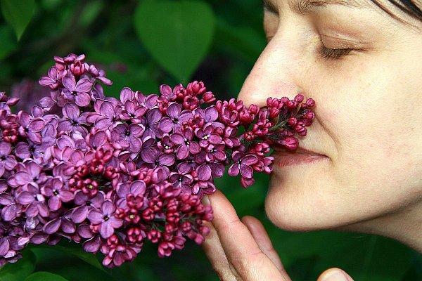 Ako svoje telo liečiť pomocou piatich zmyslov